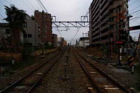 DSC_4415